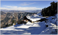 Merry Christmas & Happy New Year! (mala singh) Tags: winter india snow mountains shimla himalayas