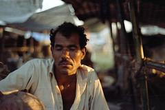 Portrait: An Epic Failure(!) (Sheikh Shahriar Ahmed) Tags: street light portrait man film analog cattle pacific image market business fujifilm konica dhaka bangladesh hexanon 50mmf17 t3n hexanon50mmf17 fujicolorc200 dhakadivision aftabnagar konicaautoreflext3n sheikhshahriarahmed primefilm3650pro3