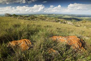 Bocaina Hills view (Visão da Serra da Bocaina)