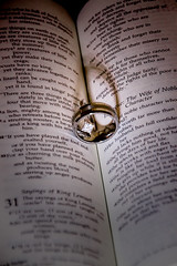 The rings on their Bible verse (Gary.Lamprecht) Tags: wedding canon marriage rings bible topaz verse t1i