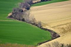 S (luporosso) Tags: italy naturaleza verde green nature landscape landscapes nikon italia country natura hills campagna paesaggi marche paesaggio colline naturalmente pajsage luporosso nikond300s