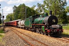 Arriving Landsborough (PJ Reading) Tags: old heritage train vintage coast long pacific rail railway australia brisbane steam special qld passenger cairns distance regional qr sunshinecoast bety r150 1079 queenslandrail landsborough 462 q150 bb1814 qrheritage qr150