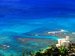 If I Can Turn Back Time_68 (Jimmy - Home now) Tags: daddy happy hawaii dad waikiki oahu happiness maui honolulu hilo waikikibeach kona