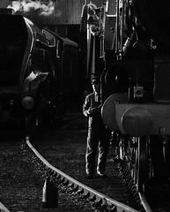 GWS 21618bwcrx (kgvuk) Tags: trains locomotive tornado railways didcot steamlocomotive gws didcotrailwaycentre 462 greatwesternsociety didcotengineshed 60163 81e a1pacific