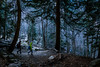 Forest (Francy_93) Tags: sunset snow alps ice waterfall frosty piemonte inverno alpi ghiaccio cascata