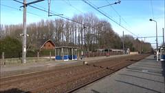 NMBS Locomotive N 1812 with an IC-train to Ostend. (Franky De Witte - Ferroequinologist) Tags: de eisenbahn railway estrada chemin fer spoorwegen ferrocarril ferro ferrovia