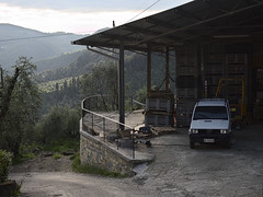 Acone_e-m10_1005065281 (Torben*) Tags: rawtherapee olympusomdem10 olympusm1442mmf3556iir italien italy toskana tuscany acone car auto lagerhalle
