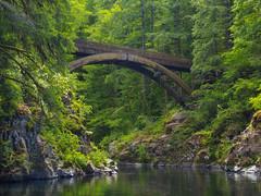 Moulton Green (RobertCross1 (off and on)) Tags: longexposure bridge trees nature water creek forest river landscape washington olympus pacificnorthwest wa omd lewisriver em5 moultonfallsstatepark 1250mmf3563mzuiko