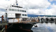 P1480729 (Tipfinder) Tags: kanada canada vancouverisland portalberni tofino ucluelet pacificrimnp long beach bearwhatching hotspringcove