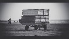 raw (joffibroersen) Tags: wood bw beach water netherlands dutch sand