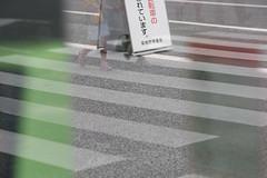 DSCF6459.jpg (nekoma15) Tags:          fujifilm xt10