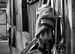 Ready to ride! (Juan-Carlos Munoz-Mateos) Tags: blackandwhite horse stable chile pucon saddle outdoor riding