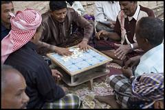 DSC_6691 (Sgaffo) Tags: yemen travelling 20072008 socotra