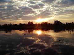 Zerkalo (Litswds) Tags: mirror espejo sunset atardecer argentina bosque rio patos nubes cielo nublado paisaje trip viaje silueta arboles forest sol flickr invierno 2016