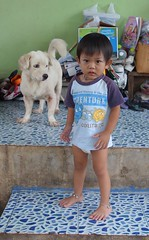 a toddler with his dog (the foreign photographer - ) Tags: boy toddler diapers dog khlong lard phrao portraits bangkhen bangkok thailand sony rx100