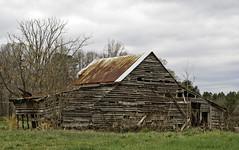 Dying Breed (hutchphotography2020) Tags: wood field barn rural nc nikon farm weathered barnwood