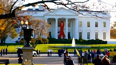 Commemorative Red Ribbon White House 2014 World AIDS Day 50174