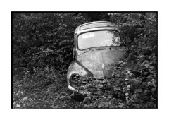 4cv again • ahuy, burgundy • 2014 (lem's) Tags: classic car rollei automobile burgundy 4 ruin voiture renault wreck 35 bourgogne chevaux carcasse 4cv ahuy