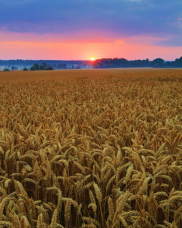 Sunrise - Sweden