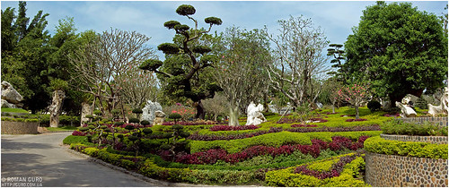 Сад миллионолетних камней | Thailand