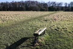Hob Moor, York, February 2015 (2) (nican45) Tags: york slr canon bench yorkshire sigma dslr 1770 1770mm hobmoor eos70d 1770mmf284dcmacro