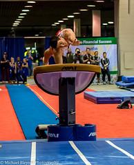 Vault (mbfirefly) Tags: people sports competition gymnastics hni hni2015