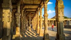 Qutab Complex Illuminated in Golden Sunlight (Mandeep Singh Kapoor) Tags: archaeology nokia minar qutab lumia windowsphonephotography lumia1020