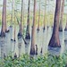 "Edie Pie's Swamp - 24"" x 36"" - Oil - Sold"