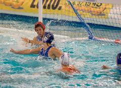 O2240760 (roel.ubels) Tags: world sport nederland greece league oranje waterpolo gouda griekenland 2015 topsport groenhovenbad