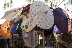 Umbrellas 8769PatLam (Studio5301) Tags: costumes festival kids children drums kilt bellydancer drummer faire clan renaissancefaire chld arizonarenaissancefestival fairycostumes studio5301 festivalsinphoenix patricialam patricialamphotographycom
