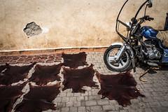 Pelle al Sole (Federico Ticchi) Tags: africa leather motorbike morocco moto marocco marrakech afrika sell pelle tipico cuoio prodotto