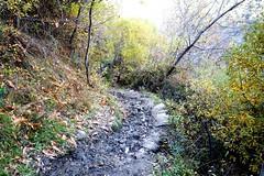 Trevelez -  Alpujarras DSC02454.JPG (Chris Belsten) Tags: winter mountains spain andalucia sierranevada trevelez jamon alpujarras mulhacen lasalpujarras