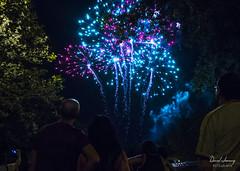 FIESTAS 2016 (Daniel JG) Tags: party sky people holiday tree canon arbol eos funny holidays fiestas cielo rocket vacaciones diversion cohete atraccion 600d