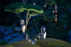 DSC05446 (regis.verger) Tags: temple zen nuit parc nocturne asiatique vgtal maulvrier