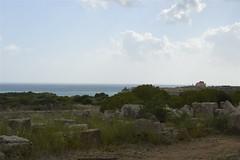Selinunte: in lontananza il Tempio C (costagar51) Tags: selinunte castelvetrano sicilia sicily italia italy arte storia architettura natura mare anticando