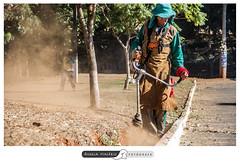 Ao da AMMA (angela.macario) Tags: ngela macario goiania goias brasil brazil parque praca trabalhadores