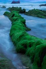 Barrika (Karolien Servranckx) Tags: blue sea espaa verde azul mar spain agua nikon bizkaia paisvasco barrika nikond3200 barrica vizkaya d3200