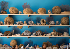 Ren fornjelse ;) (Lajla Stausholm) Tags: sea world museum st valsamidis kalymnos