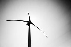 Black giant (F719D) Tags: sky sun tower backlight wind blades windturbine windfarm windpower windenergy windkraft vestas mhi v164