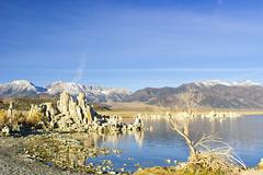 Lake Mono Morning (fate atc) Tags: california leeviningpeak monolake pinkfloyd thegreatbasin tufa usa alkalinelake endorheicbasin