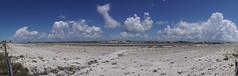 DSC03772-73_stitch (Capt Kodak) Tags: panorama florida photomerge pensacolabeach gulfislandsnationalseashore microsoftresearch microsoftimagecompositeeditor microsofticev2030 madefromtwoincamerapanos