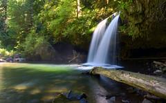 Just Logging In (Jeffrey Neihart) Tags: jeffreyneihart buttecreek pool creek longexposure silkywater nikon nikond5100 nikon1680284
