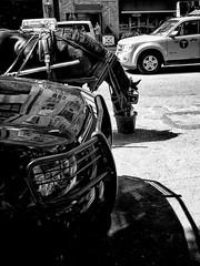 Lunch break (Ricardas Jarmalavicius) Tags: blackandwhite blackwhite noiretblanc adorenoir horse ricardasjarmalavicius jarmalavicius nyc newyork photography photographize photooftheday photographie iphone6s iphoneography wipplay flickr flickrheroes flickrfriday cars taxi centralpark 121clicks street streetphotography straat bestphoto 500px iphonephotography mobilephotography bnw