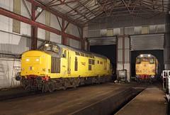 97304, Swanwick, 25 July 2016 (Mr Joseph Bloggs) Tags: 31233 97304 mrc midland railway butterley railroad train treno depot swanwick emrps bahn network rail
