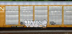 voyer (timetomakethepasta) Tags: voyer dlr coma bogus freight train graffiti ttx cn autorack canadian national sunrise east coast
