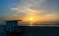 Cocoa Beach, Florida (jrme labouyrie) Tags: cocoa beach floride florida usa lever de soleil sunrise united states america sunshine state gator etat golf du mexique ocean atlantique palmier chaleur humidit jerome labouyrie apple iphone 6s