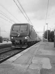 febbraio / marzo 2016 - nokia 808 pure view #110 (train_spotting) Tags: grosseto trenitalia dtr divisionetrasportoregionale regionaleveloce traxx160dpc e464472 nokia808 pureview