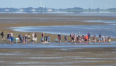 Baltrum, a guided mudflathike (Alta alatis patent) Tags: baltrum guide hike mudflat group wetfeet