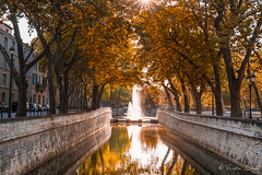 Jardin de la Fontaine, Nmes, Gard, France (Eliette S) Tags: automne autumn nmes gard france jardin fontaine nikon d610 orange jaune reflet couleurs