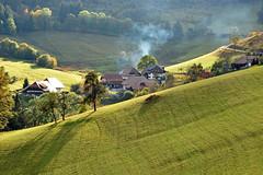 smoky valley (heuwieser) Tags: blackforest nikon d7200 autumn bauernhfe nature meadow wiese belchen haldenhof outdoor landscape